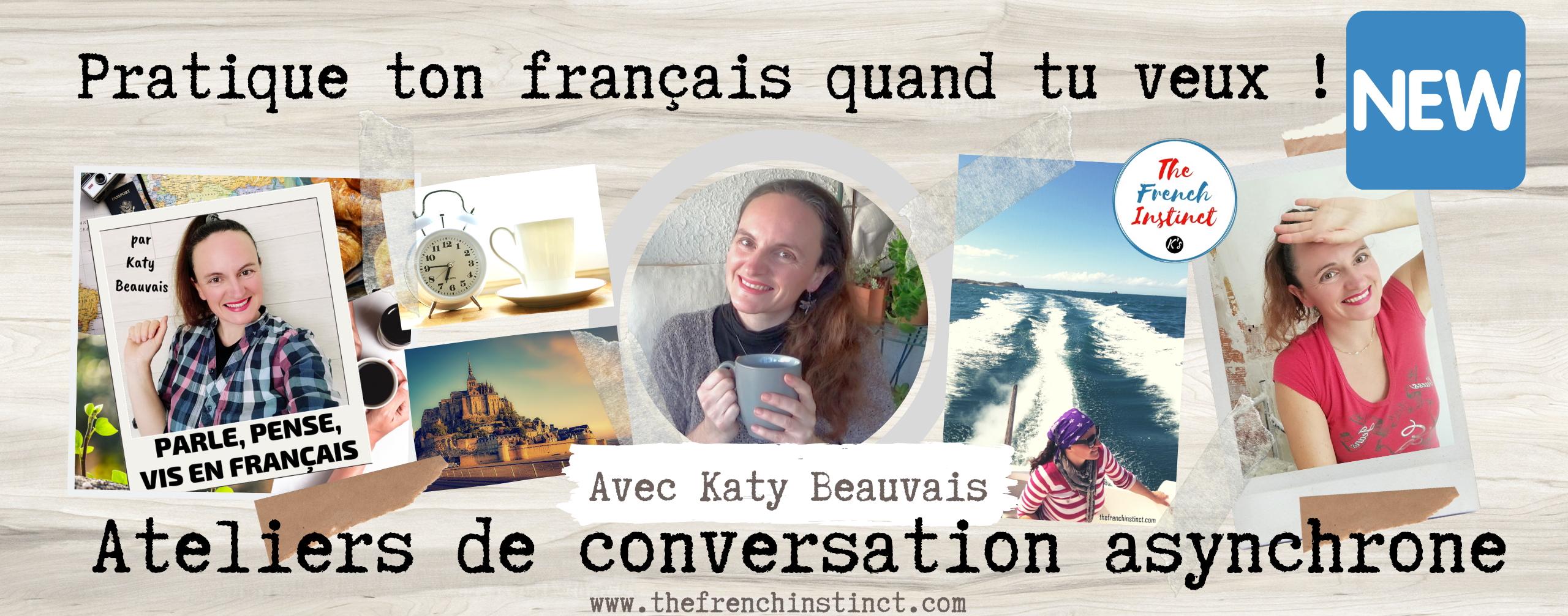 ateliers-de-francais-the-french-instinct-parle-francais-conversation-asynchrone